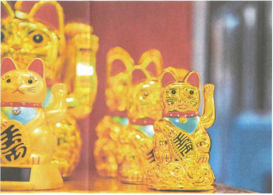 Katzenjammer der Klone